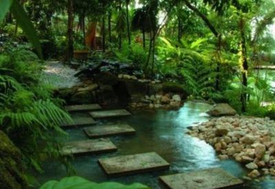 Tropical-Home-Garden-Design-Ideas